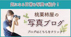 桃栗柿屋野々村の写真ブログ
